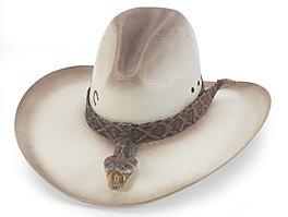 Cowboy Hats in History - Charlie 1 Horse